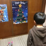 Can you put the star on the tree?